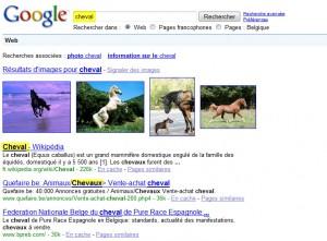 Google - Singulier et pluriel