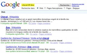 Google - Recherche AND / OR (2)